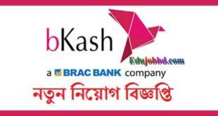 Bkash Company Officer New Job circular